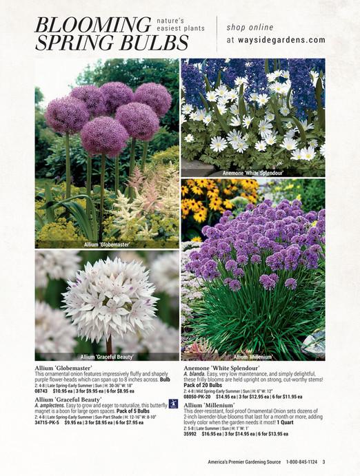 Pictures Of Gardening online catalog | wayside gardens