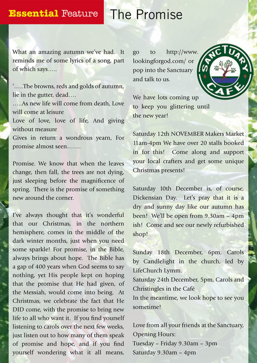 My Publications The Essential Guide Lymm Nov Dec Fb Page 26 27