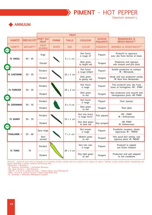Agrinova Co  - Technisem Catalog - Page 44-45 - Created with