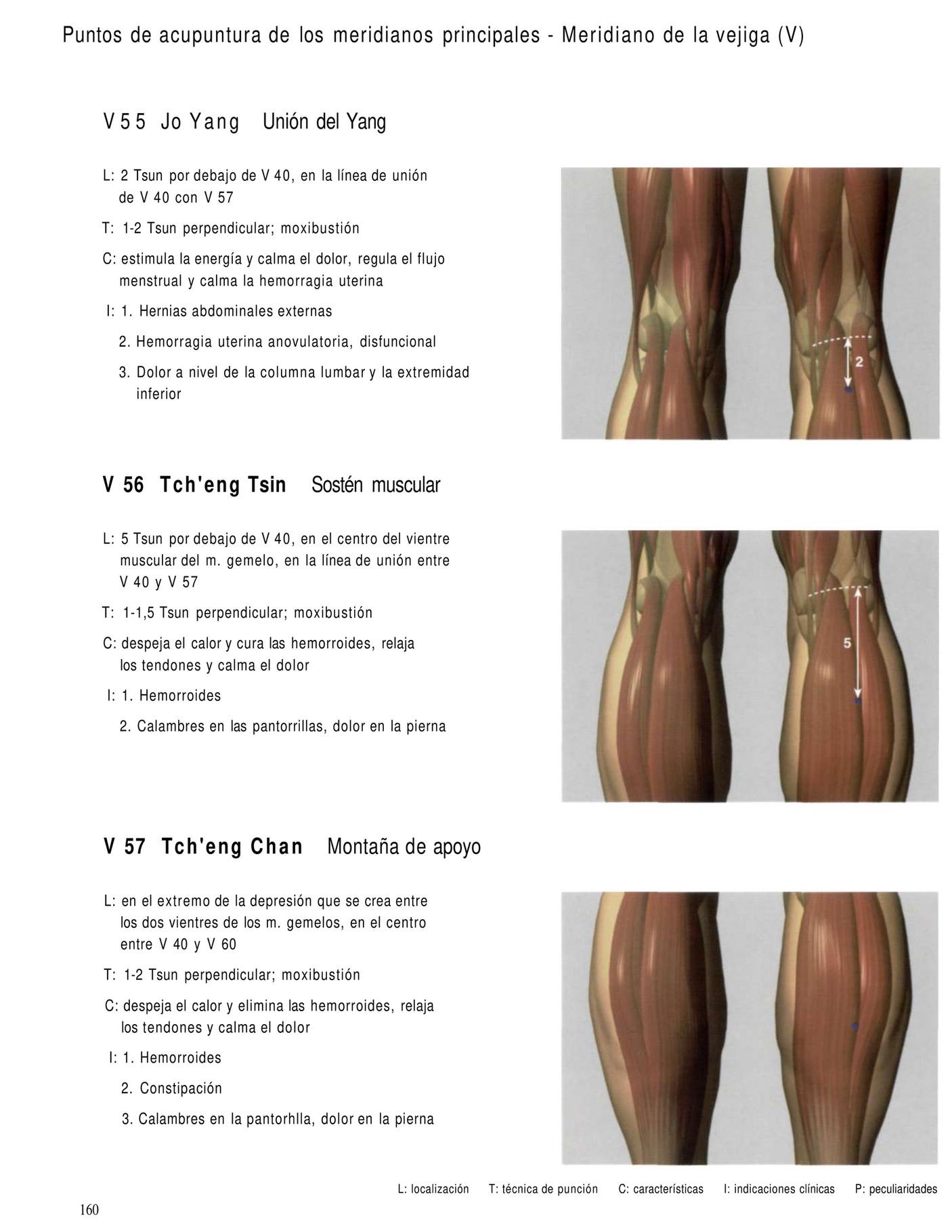 Rls dolor de rodilla