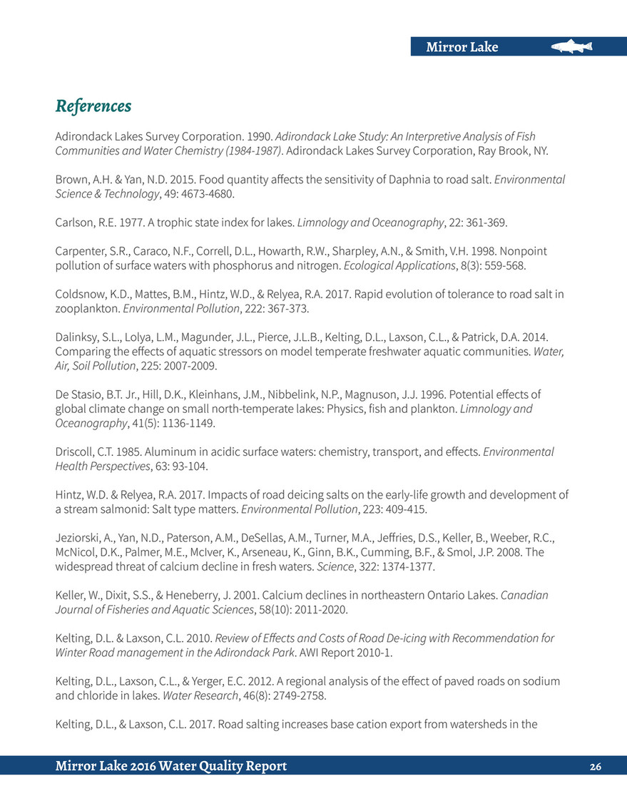 Mirror Lake References Adirondack Lakes Survey Corporation 1990 Study An Interpretive