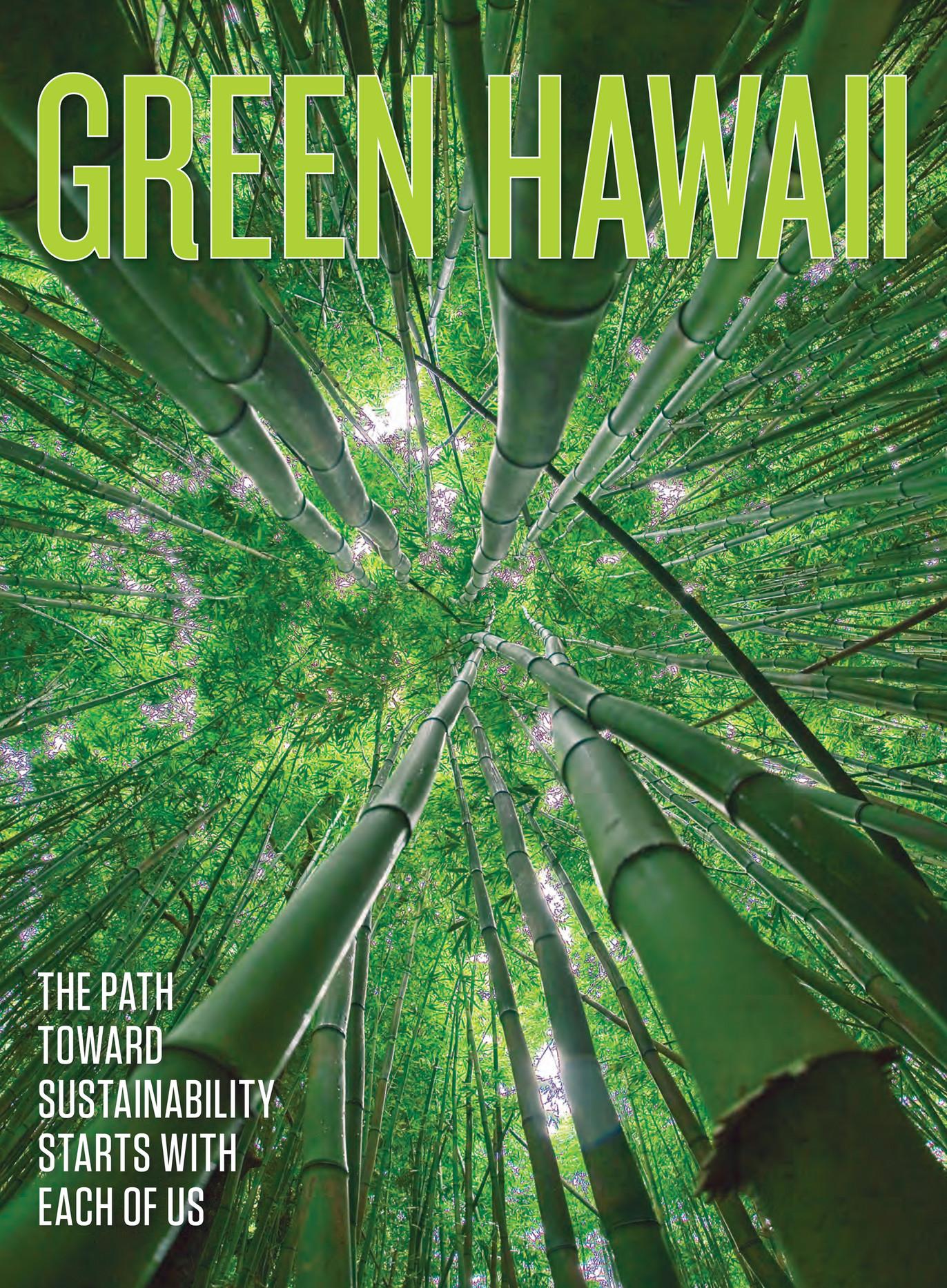 Hawaiian Electric - 2018 Green Hawaii - Page 1