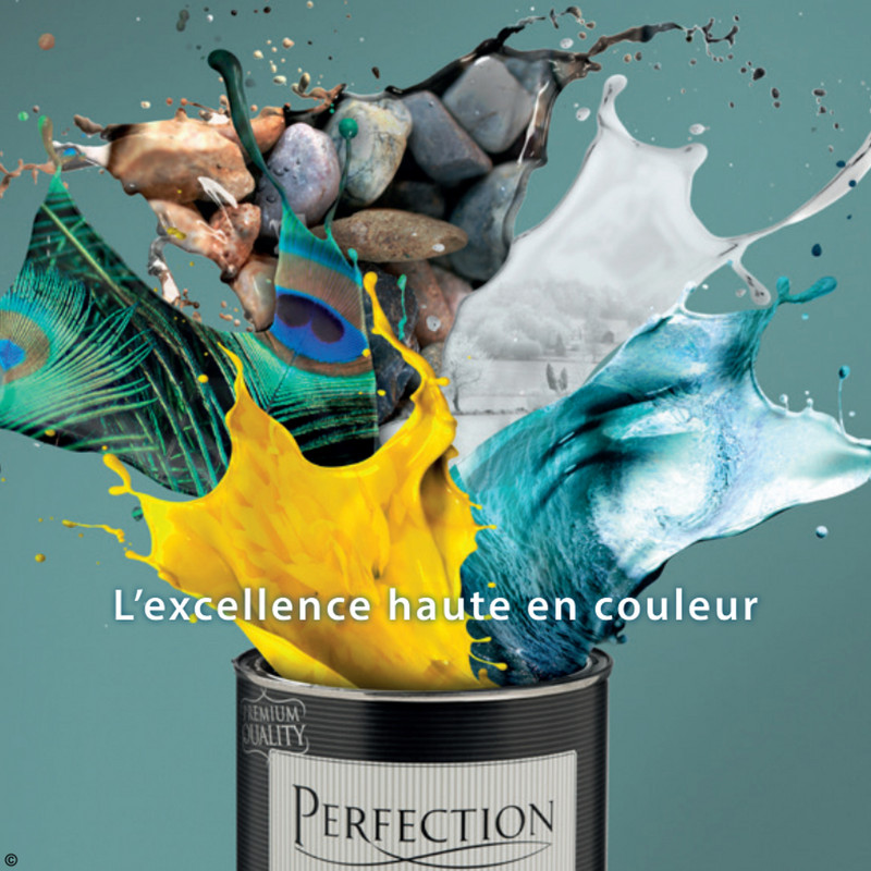 Folder Brico du 27/03/2018 au 31/12/2018 - brochure perfection fr singled pages_1050901.pdf