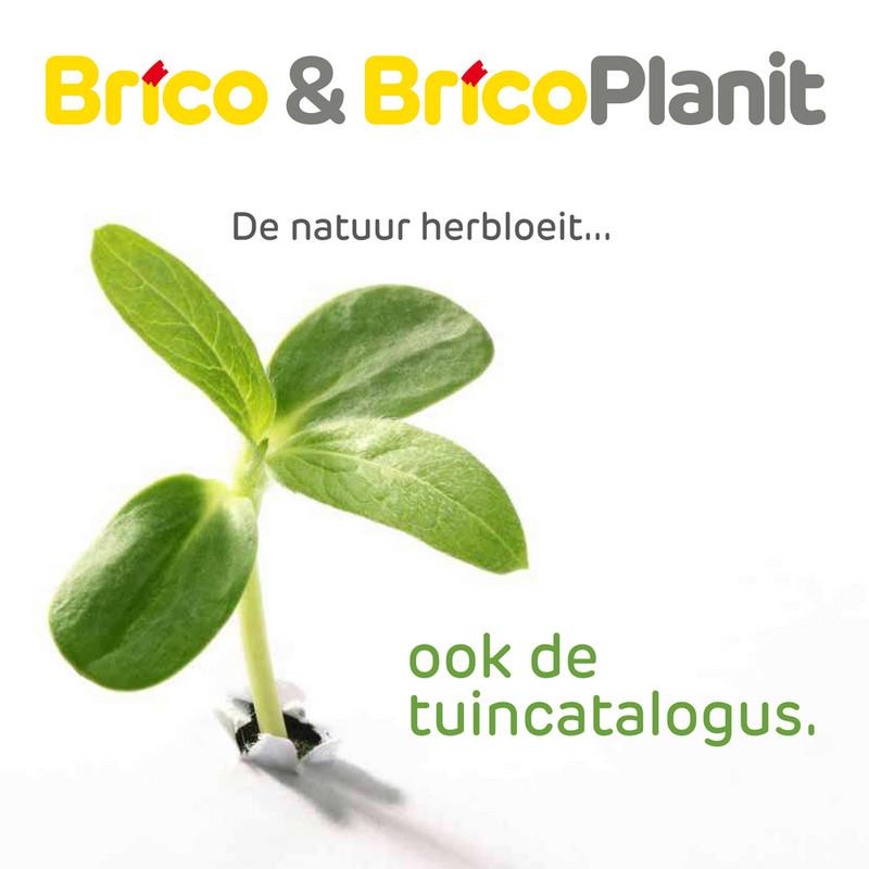 Brico folder van 04/05/2020 tot 31/05/2020 - Maandpromoties mei