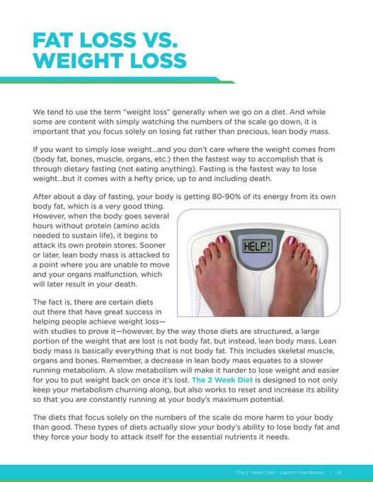 2 week diet optin page