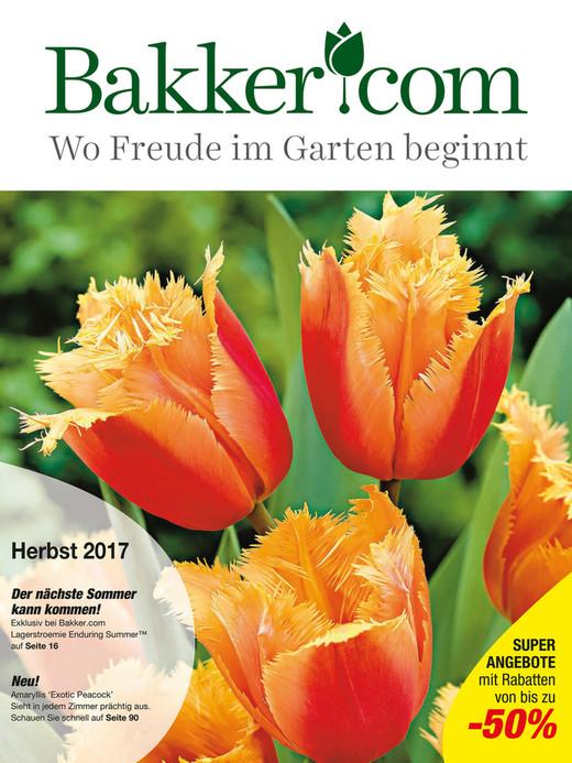 Wo Freude Im Garten Beginnt Herbst 2017 Der Nächste Sommer Kann Kommen!  Exklusiv Bei Bakker