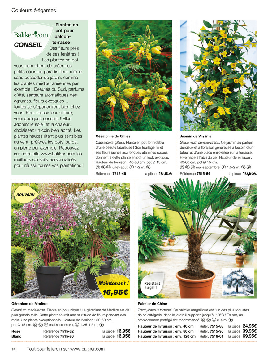 Plante Robuste Pour Terrasse bakker [fr] - automne 2017 - page 14-15 - created with