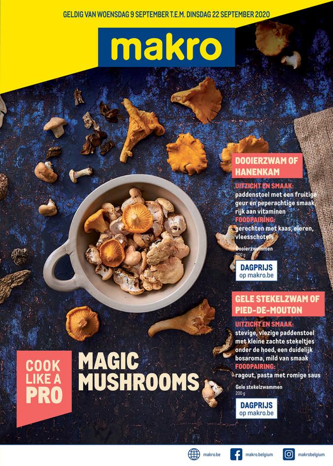 Makro folder van 09/09/2020 tot 22/09/2020 - Weekpromoties 37 Mushrooms